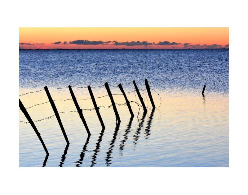 Camargue de Romain DOUCELIN, Prodi Art, abstrait, eau, coucher du soleil, soleil, lever du soleil, Lac, animal, animaux, faune, Paysages, paysage, environnement, nature, camargue, parc de la camargue