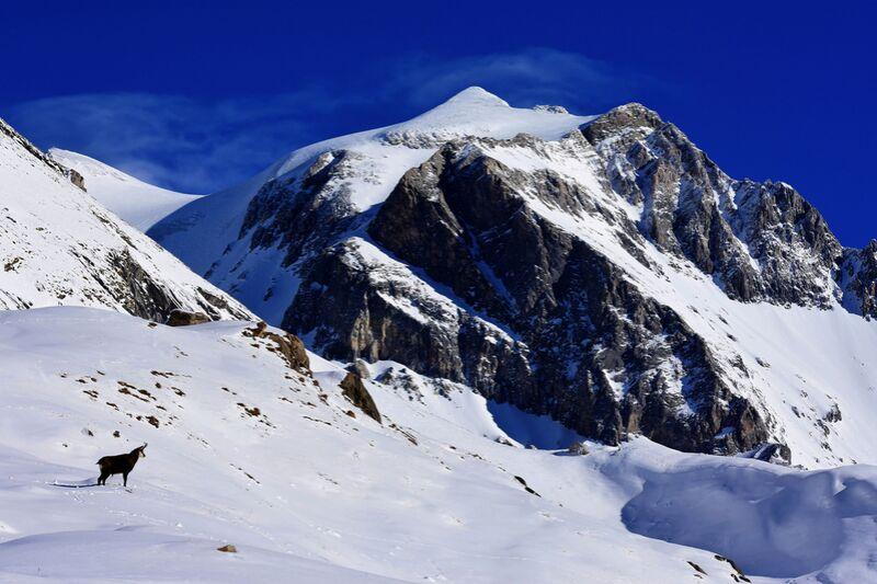 Summit 1 de Romain DOUCELIN Decor Image