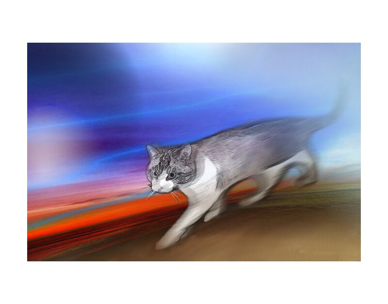 Twix from Adam da Silva, Prodi Art, colors, red, blue, animal, Cat, pet, digital art