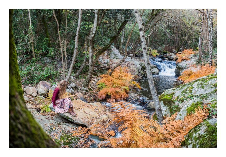 Marie N. de Marie Guibouin, Prodi Art, forêt, femme, portrait, féminin, rivière, Marie Niederlender, montessori, elfe, féminité, nature