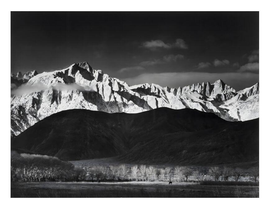 Lever du soleil d'hiver à Lone Pine, Sierra Nevada - Ansel Adams 1944 de AUX BEAUX-ARTS, Prodi Art, montagnes, ANSEL ADAMS, ciel, noir et blanc, paysage, forêt, Lac, USA, Sierra Nevada, Adams