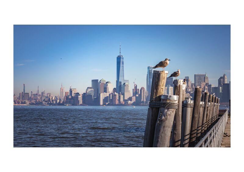 Manhattan de Caro Li, Prodi Art, Cher Li, Manhattan, New York, Photographie, USA, états-unis, la photographie
