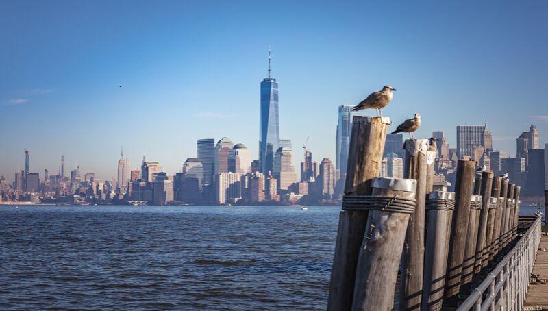 Manhattan de Caro Li Decor Image