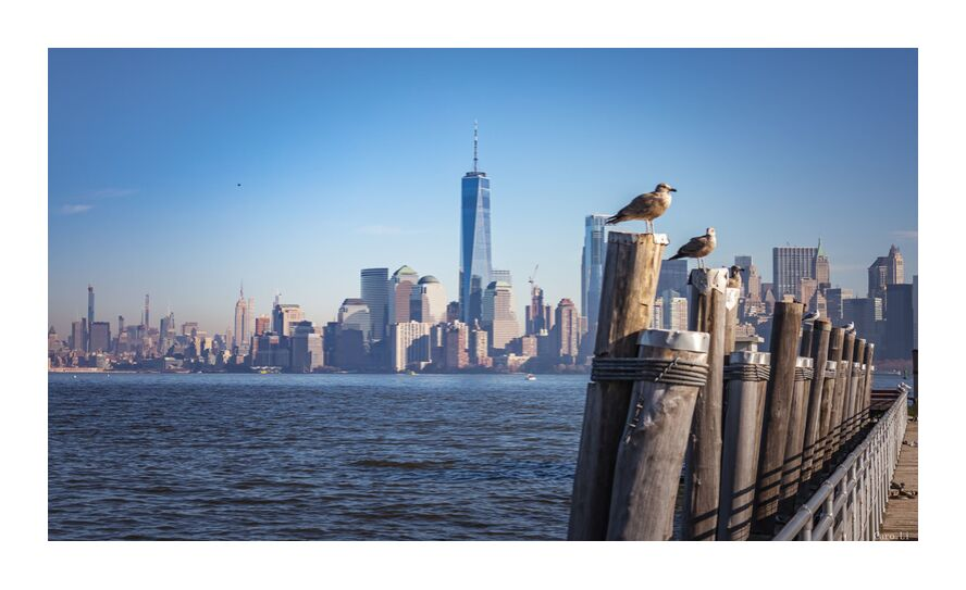 Manhattan from Caro Li, Prodi Art, Dear Li, Manhattan, new york, Photography, USA, United States, photography