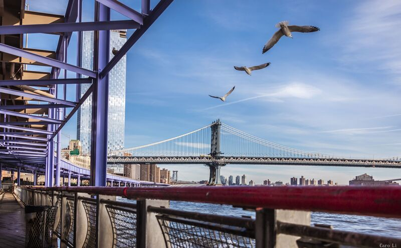 Manhattan Bridge from Caro Li Decor Image
