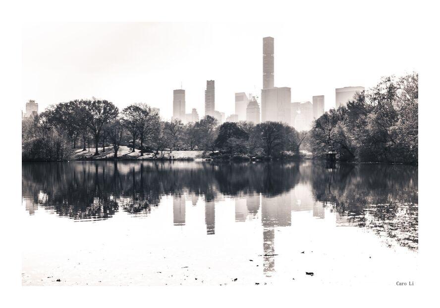 Central Park  -  New York from Caro Li, Prodi Art, Manhattan, street, New-York, Central Park, USA, Photography, photography, United States, Dear Li, Black & White
