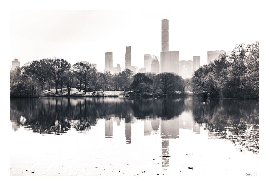Central Park  -  New York from Caro Li, Prodi Art, Manhattan, street, New-York, Central Park, USA, Photography, photography, United States, Dear Li, Black & White