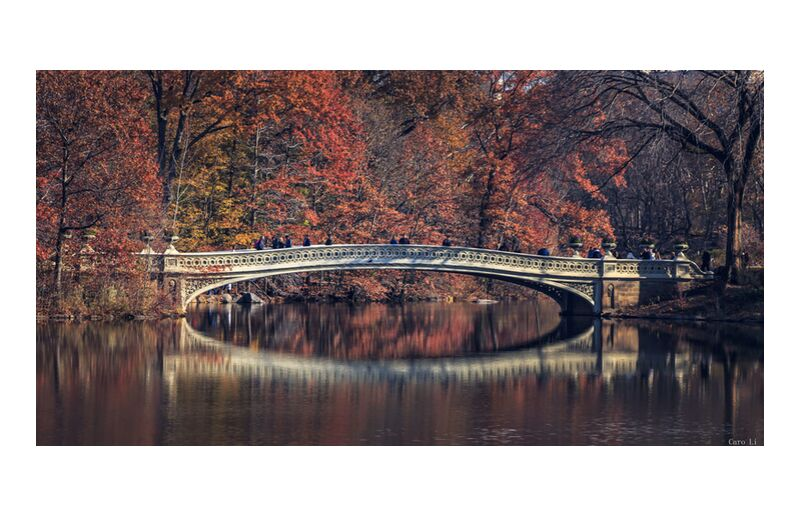 Central Park - Bow Bridge from Caro Li, Prodi Art, New-York, NY, USA, United States, Photography, photography, Dear Li, Central Park - Bow Bridge