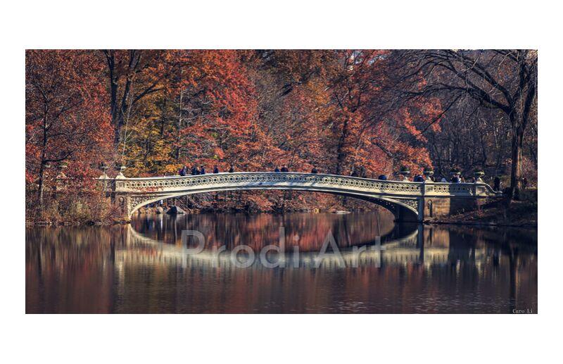 Central Park - Bow Bridge from Caro Li, Prodi Art, New-York, NY, USA, United States, Photography, photography, Dear Li, Central Park - Bow Bridge