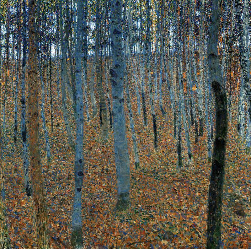 Forêt de bouleaux - Gustav Klimt de AUX BEAUX-ARTS Decor Image