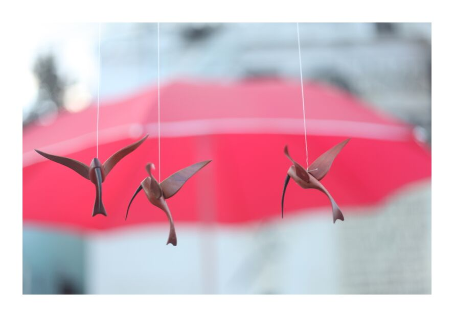 Envol from Stéphanie Bobault, Prodi Art, birds