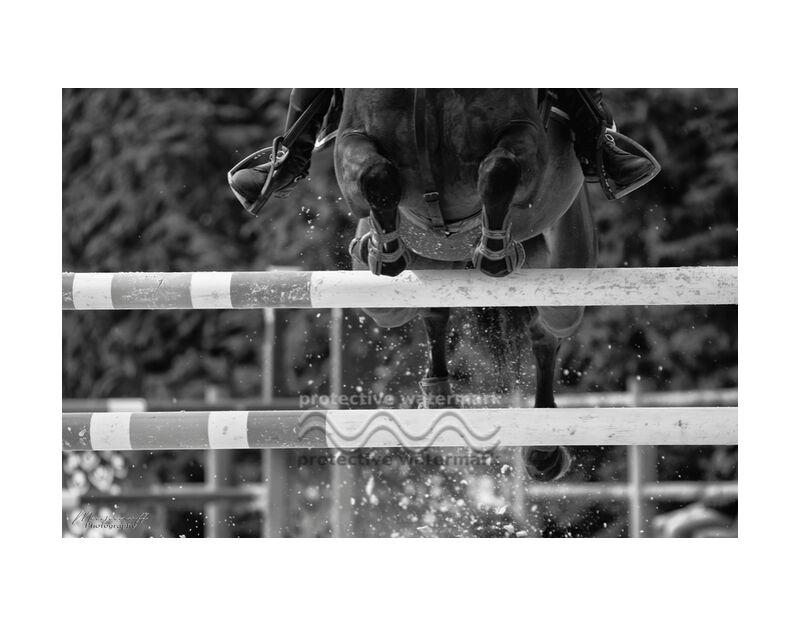 Le franchissement de Mayanoff Photography, Prodi Art, équestre, cheval, concours, obstacles, équestre, cheval, sauter, concurrence, jumping, cavalier, saut, cavalier