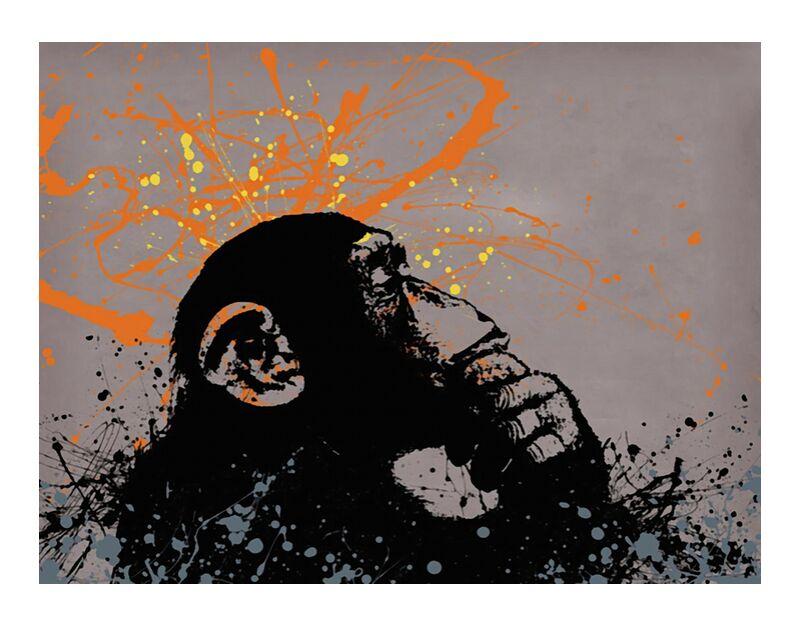 Thinker monkey - BANKSY desde AUX BEAUX-ARTS, Prodi Art, arte callejero, pintada, Banksy, mono, gráfico