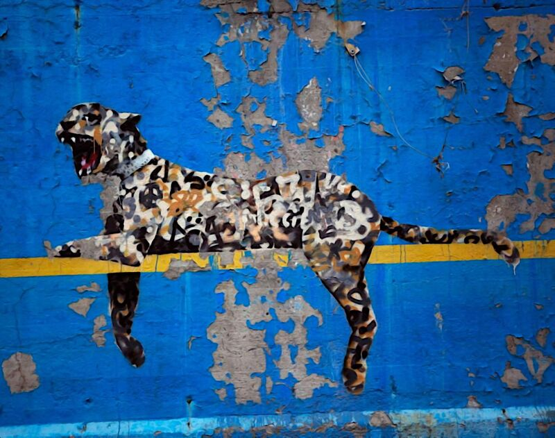 Bronx Zoo - BANKSY from AUX BEAUX-ARTS Decor Image