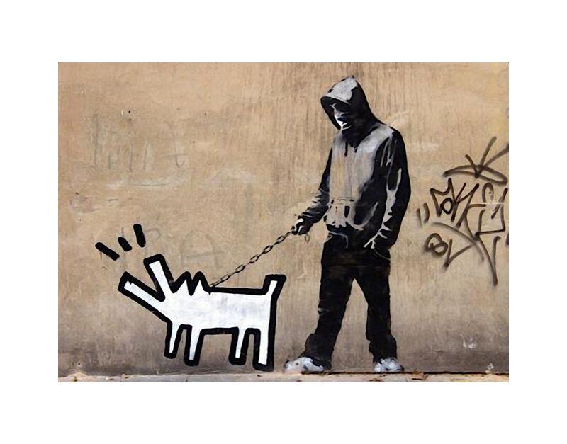 Dog - BANKSY desde AUX BEAUX-ARTS, Prodi Art, pintada, perro, arte callejero, Banksy