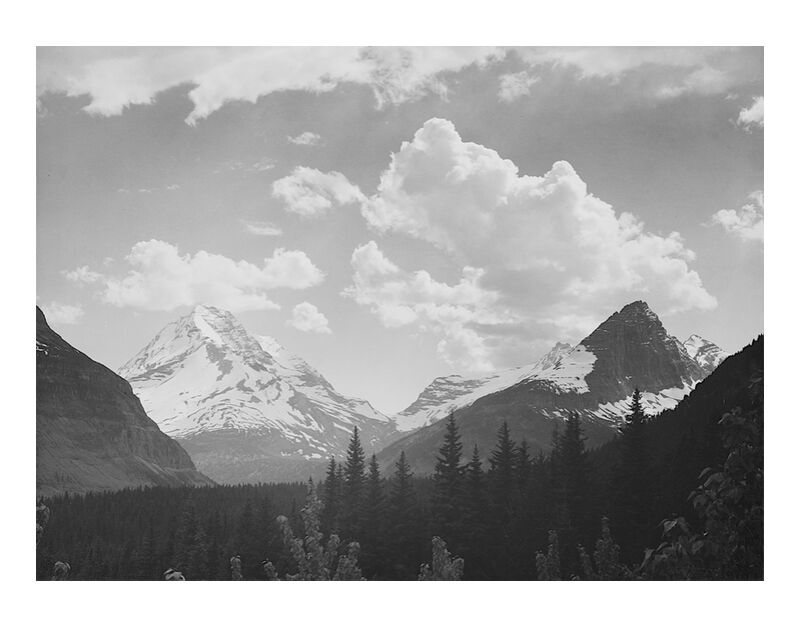 Looking Across Forest To Mountains And Clouds - Ansel Adams desde AUX BEAUX-ARTS, Prodi Art, montaje, nube, paisaje, blanco y negro, nieve, invierno, abeto