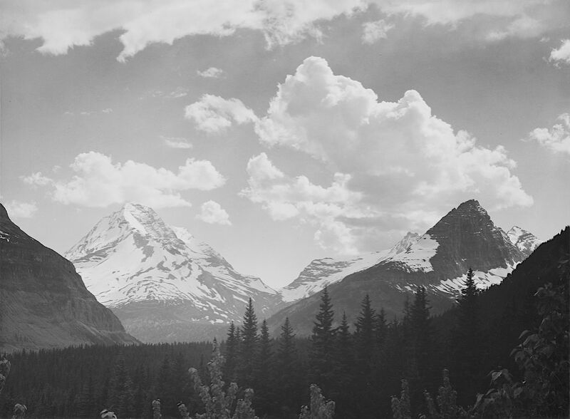 Looking Across Forest To Mountains And Clouds - Ansel Adams desde AUX BEAUX-ARTS Decor Image