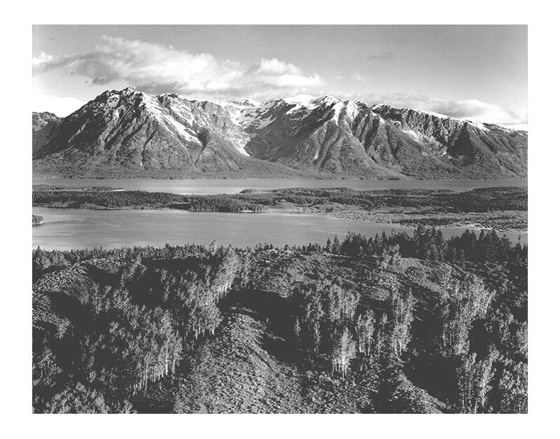 Grand Teton, National Park Wyoming - Ansel Adams desde AUX BEAUX-ARTS, Prodi Art, ANSEL ADAMS, montañas, árboles, blanco y negro, Wyoming