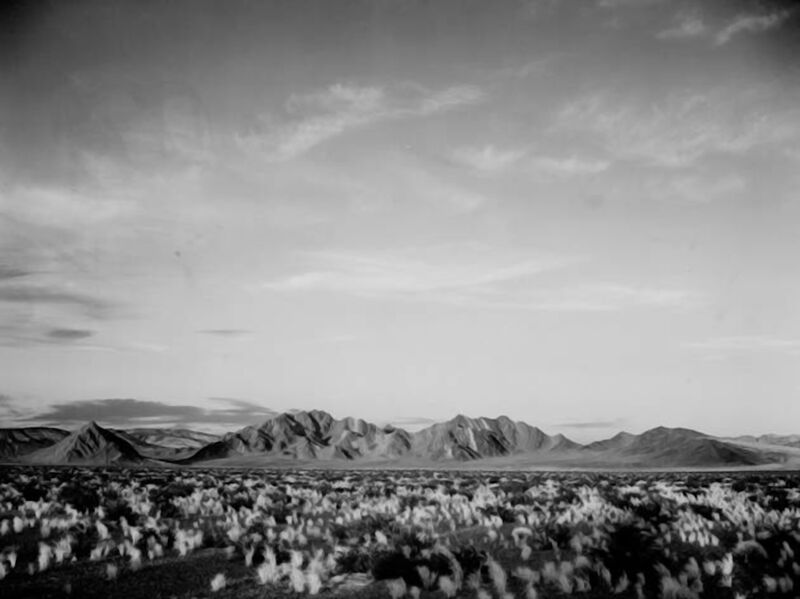 View Of Montains Desert Shrubs Highlighted - Ansel Adams from AUX BEAUX-ARTS Decor Image