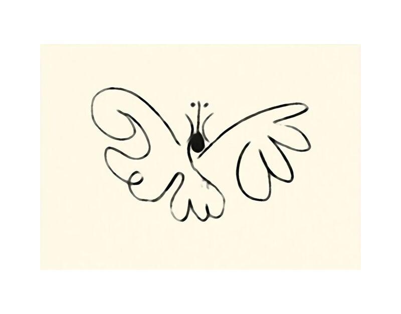 The Butterfly - Picasso desde AUX BEAUX-ARTS, Prodi Art, mariposa, picasso, dibujo, rasgos