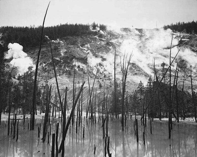 Rocky Mountain National Barren trunks in water near steam rising from mountains - Ansel Adams desde AUX BEAUX-ARTS Decor Image