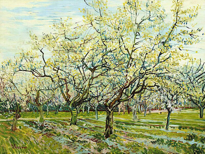 The White Orchard - Van Gogh desde AUX BEAUX-ARTS Decor Image