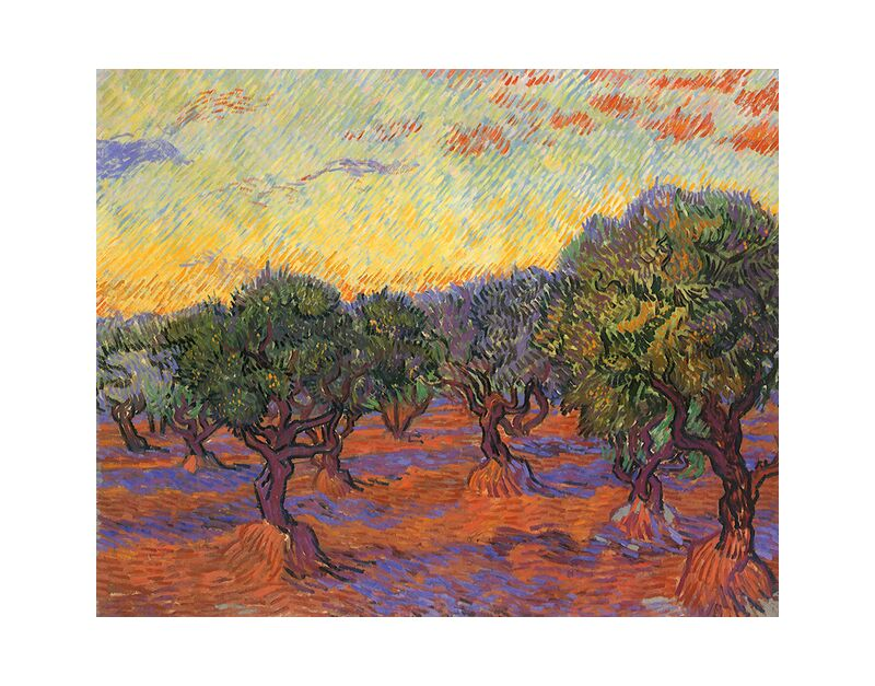 Grove of Olive Trees - Van Gogh desde AUX BEAUX-ARTS, Prodi Art, Van gogh, surco de olivos, pintura, naturaleza, paisaje