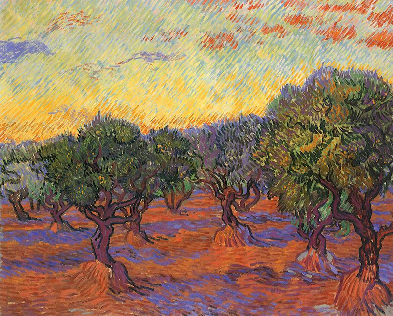 Grove of Olive Trees - Van Gogh from AUX BEAUX-ARTS Decor Image