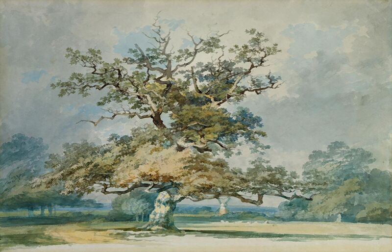A Landscape with an Old Oak Tree - TURNER desde AUX BEAUX-ARTS Decor Image