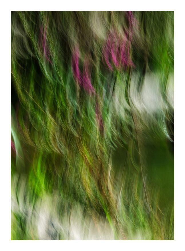 Le buisson ardent de Céline Pivoine Eyes, Prodi Art, Photographie abstraite, vert, peinture, nature, abstrait, Mouvement intentionnel de la caméra, ICM