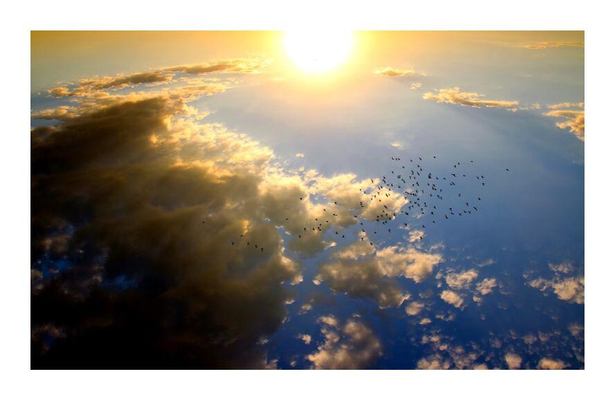 Flying over the Sun from Pierre Gaultier, Prodi Art, sunset, birds, cloud, Sun, sky, red