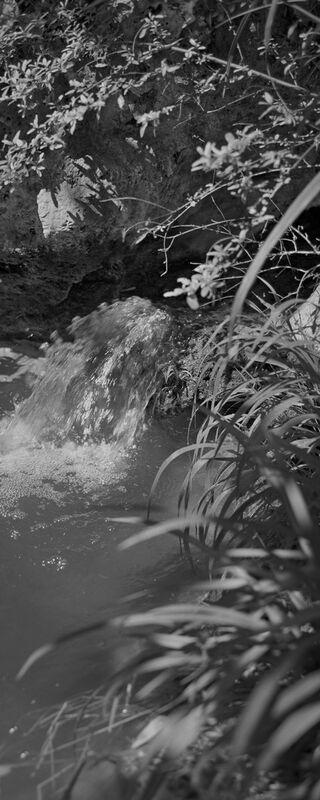 La montagne est dans mon jardin 2 de jean michel RENAUDIN Decor Image