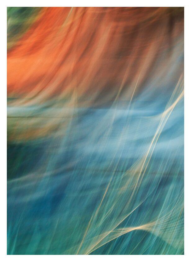 Dame nature de Céline Pivoine Eyes, Prodi Art, couleurs, plante, fleurs, Photographie abstraite, art abstrait, flou artistique, Mouvement intentionnel de la caméra, ICM, paysage, nature