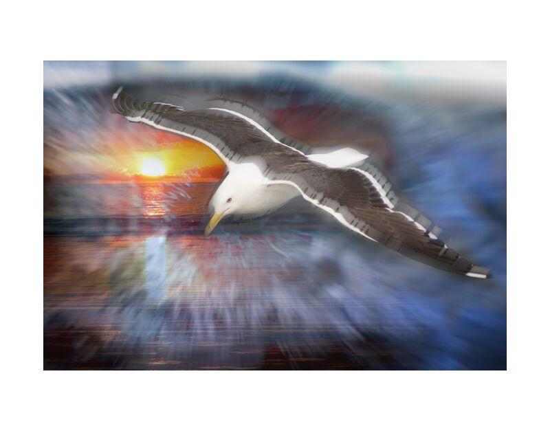 Vol d'une mouette de Adam da Silva, Prodi Art, mouette, vol, soleil, bleu, oiseau, mer, océan, plage