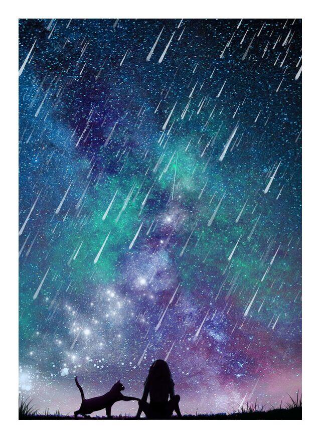 Stars falling infinity de Sabatier Marie , Prodi Art, galaxie, pluie d'étoiles filante, étoiles, chute, chats, Chat, étoiles, étoile