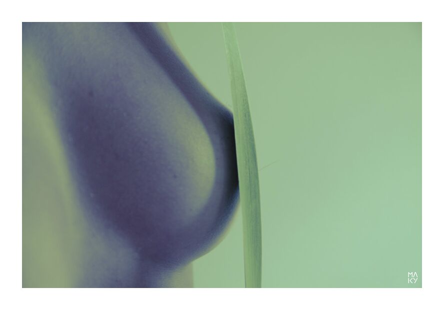 Delicacy.5 from Maky Art, Prodi Art, vegetable, nature, woman, breast, photography