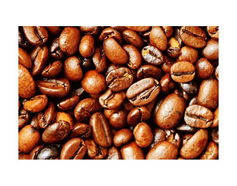 Nos grains de café de Pierre Gaultier, Prodi Art, rôti, grains de café, café, caféine, marron