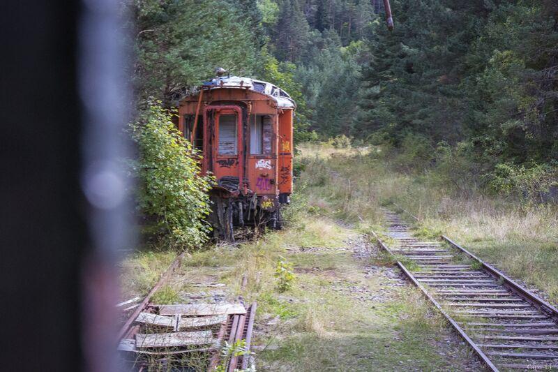 Train de Caro Li Decor Image