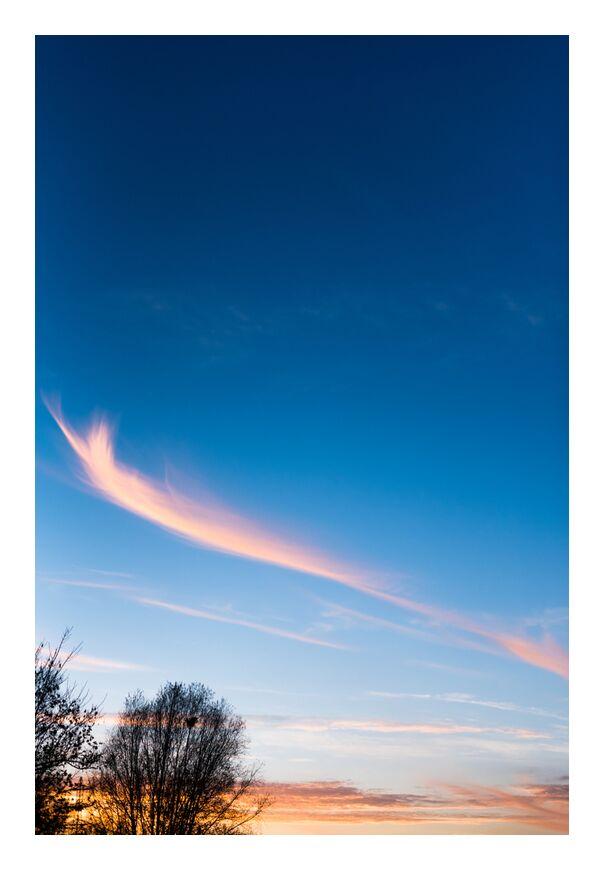 Voyage au pays des rêves de Marie Guibouin, Prodi Art, ciel, nuages, nature, arbres, marie guibouin, coucher du soleil