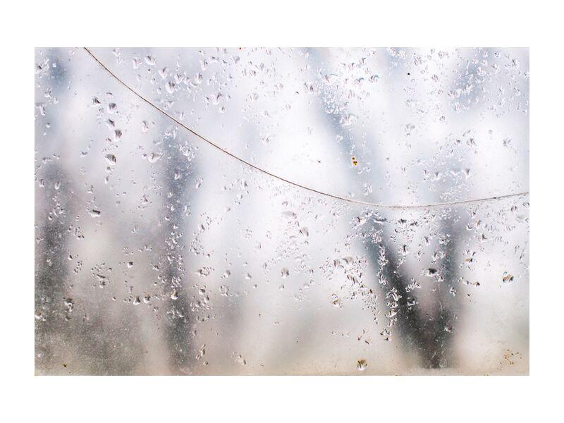 Derrière le voile des apparences de Marie Guibouin, Prodi Art, nature, arbres, forêt, gouttes d'eau, eau, vitre, marie guibouin, pluie