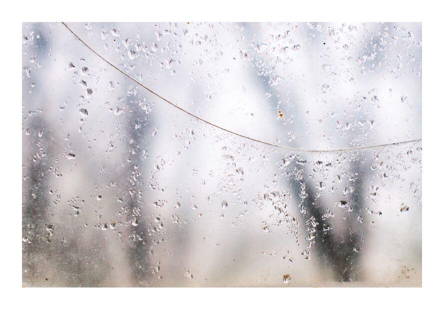 Derrière le voile des apparences from Marie Guibouin, Prodi Art, rain, marie guibouin, window, water, water drops, forest, trees, nature