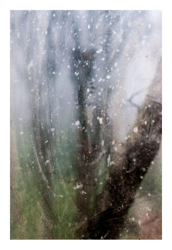 Nature en peinture de Marie Guibouin, Prodi Art, forêt, bois, arbre, peinture, nature, marie guibouin, vitre