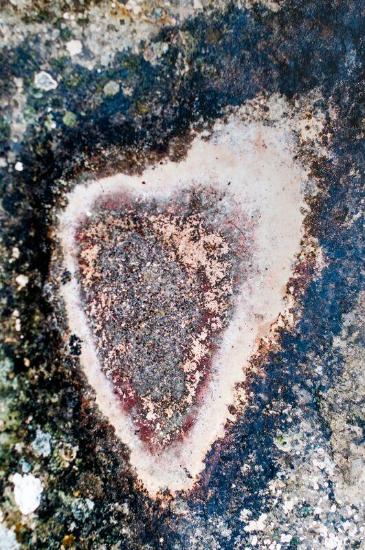 Amour toujours de Marie Guibouin Decor Image