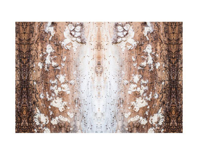 Que la lumière soit de Marie Guibouin, Prodi Art, lumière, miroir, marie guibouin, écorce, arbre, nature, méditation