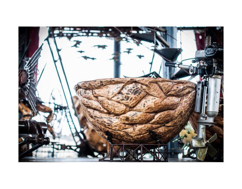 Noix - carrousel des mondes marins de Marie Guibouin, Prodi Art, carrousel, noix, manège, machines de l'ile, Marin, marie guibouin, nantes, nature