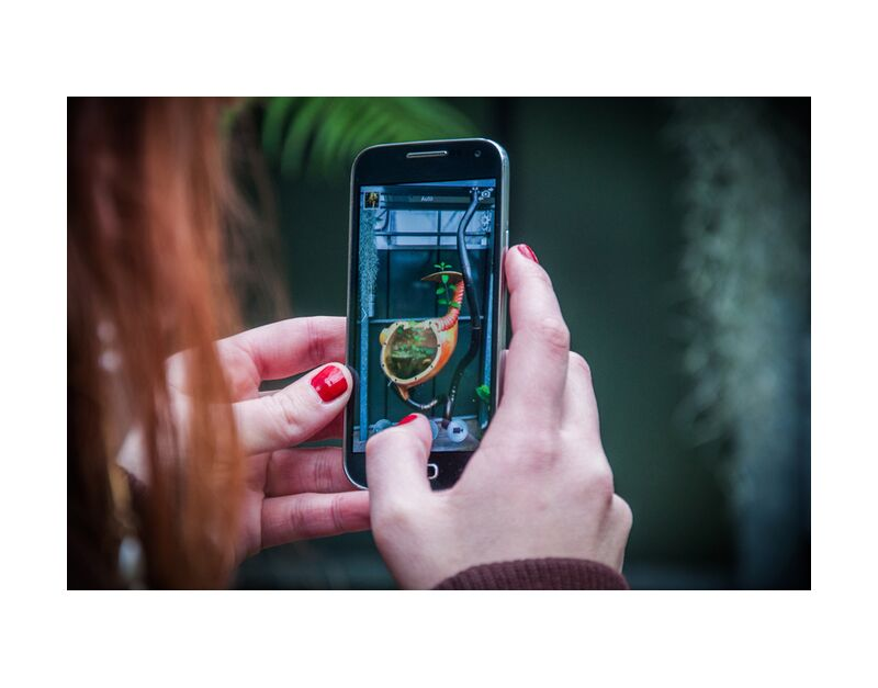 Hand's phone plant de Marie Guibouin, Prodi Art, vernis à ongles, marie guibouin, nature, téléphone, mains, art, plantes, machines de l'ile, nantes, serre tropicale, femme, rouge, vert