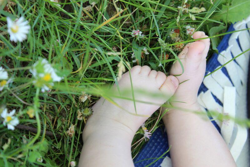 Petits pieds dans l'herbe de jenny buniet Decor Image