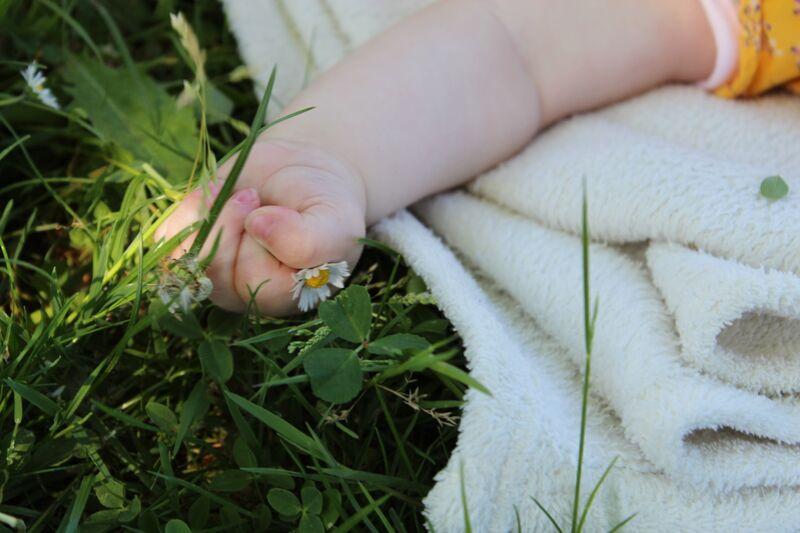 Petite main dans l'herbe de jenny buniet Decor Image
