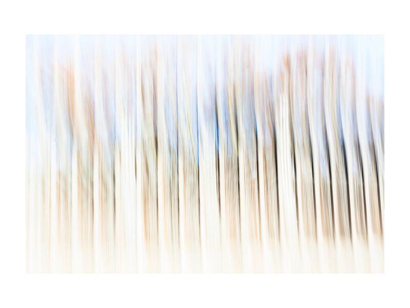 Barrodé from Julien Replat, Prodi Art, abstract, blurry, Photography, design