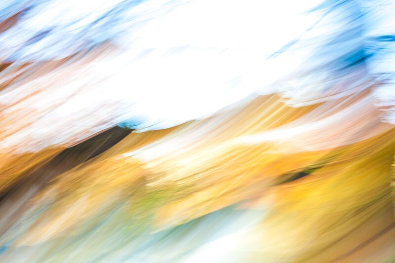En Vague D'Automne de Julien Replat Decor Image